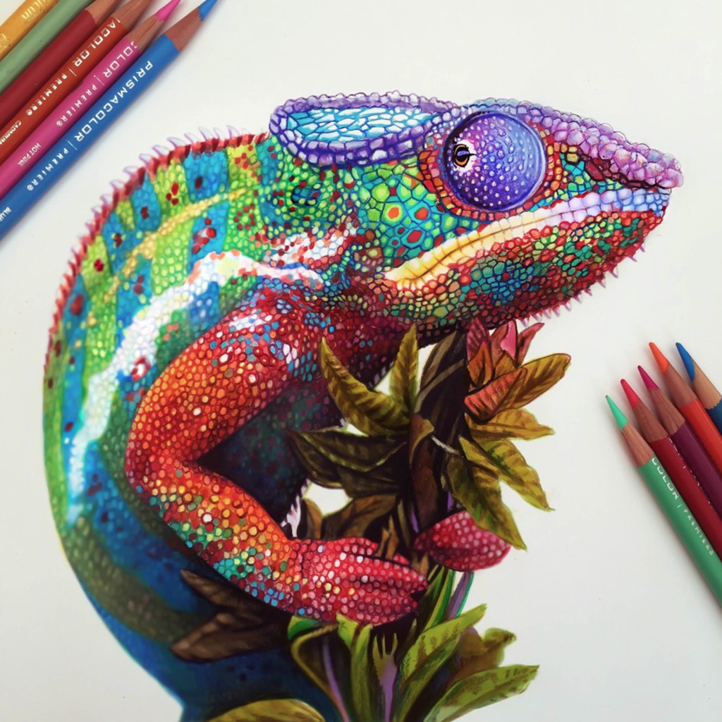 Extraordinary Colorful 3D Drawing by Morgan Davidson 99 1024x1024 Extraordinary Colorful 3D Drawing by Morgan Davidson