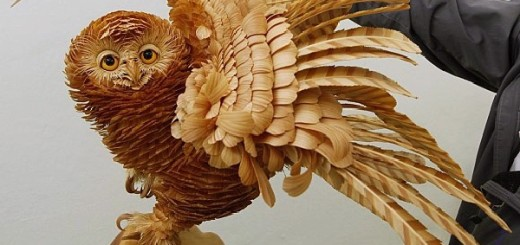 Layers of Cedar Wood Chip Sculptures of Sergei Bobkov