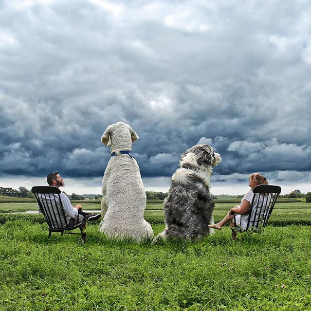 Wonderful Photoshop manipulations With Giant Dog by Christopher Cline 02 Wonderful Imaginative Adventures With Giant Dog by Christopher Cline
