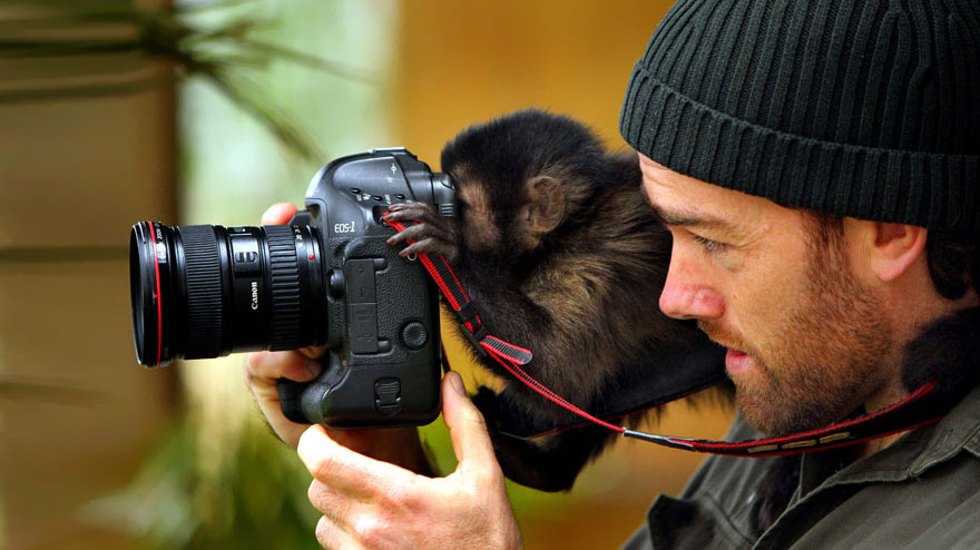 20 Adorable Photos Of Animals That Want To Be Photographers