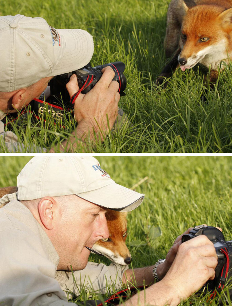 Adorable Photos Of Animals That Want To Be Photographers 777x1024 20 Adorable Photos Of Animals That Want To Be Photographers