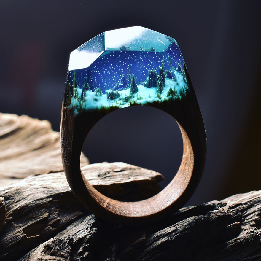 Creative Art Miniature Worlds Inside Wooden Rings 99 Creative Art : Miniature Worlds Inside Wooden Rings