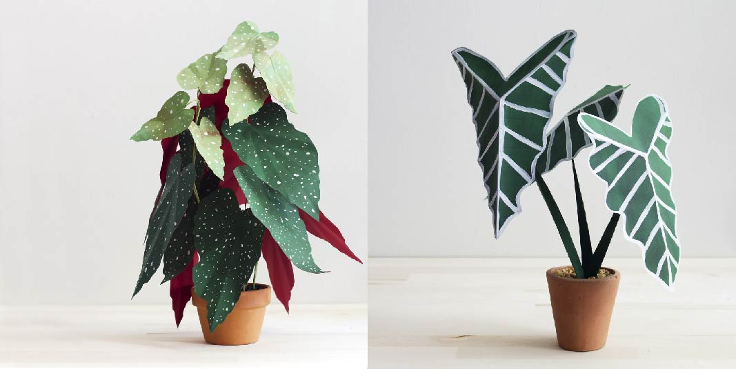 Creative Idea  Plants From Paper 33