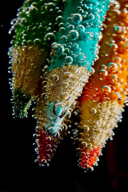 Beauty and Colorful Macro Photography 11 Unusual Macro Photography Ideas