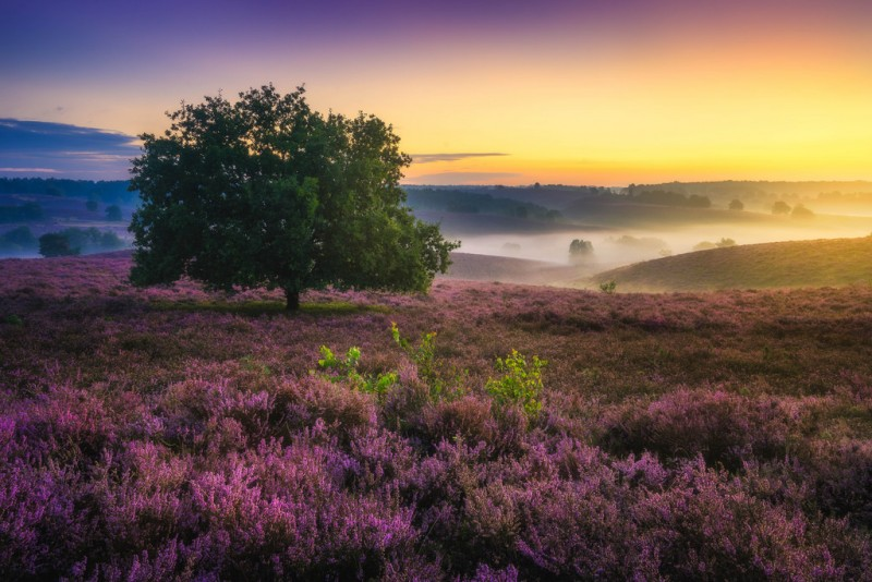 Wonderful Colorful Landscape Photography 77 The Beauty of Colorful Landscape Photography