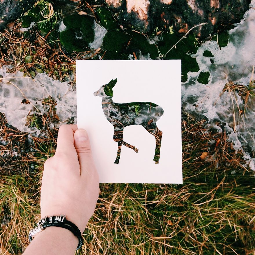 Beauty Nikolai Tolsty Paper Silhouettes 99 Artist Use Nature To Color Animal Paper Silhouettes