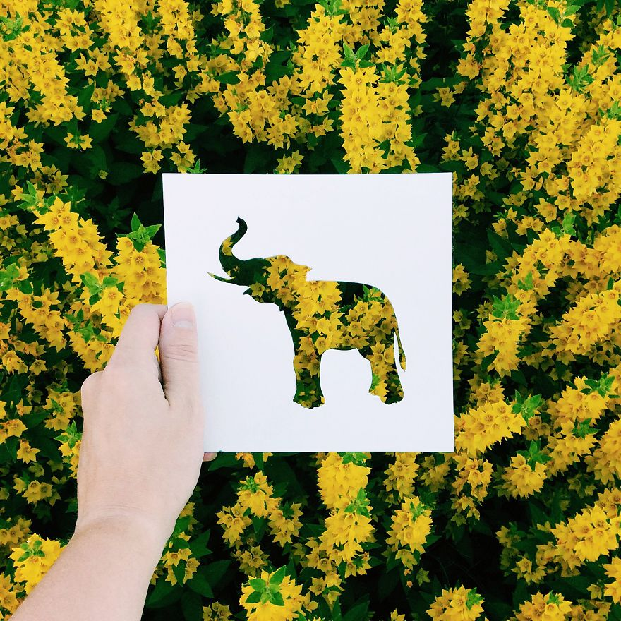 Double exposure Ideas by Nikolai Tolsty Artist Use Nature To Color Animal Paper Silhouettes