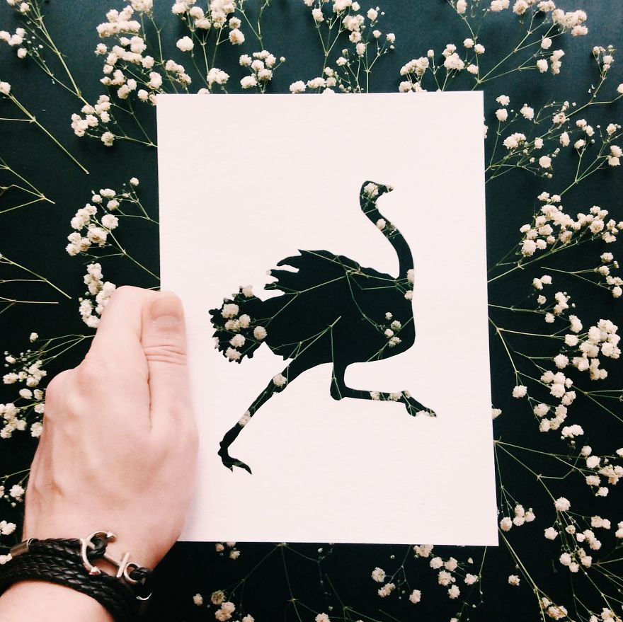 Stunning Nikolai Tolsty Paper Silhouettes 99 Artist Use Nature To Color Animal Paper Silhouettes