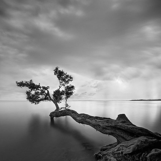 Beautiful Black and White Landscape Photography