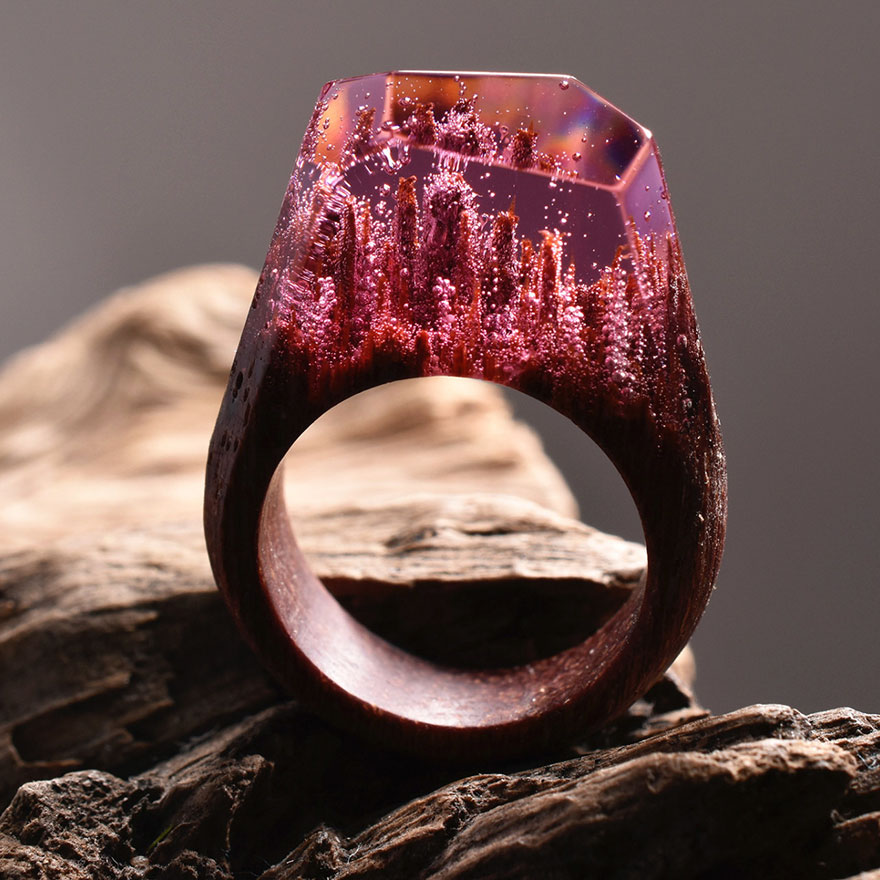 New Miniature Worlds Inside Wooden Rings 77