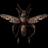 Engraved Entomology: Stunning Digital Illustrations by Billelis