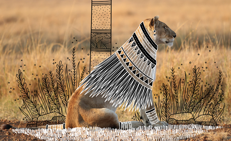 Elegant Tribal Design Over Animal Photographs Animal Doodles : Elegant Tribal Design Over Animal Photographs