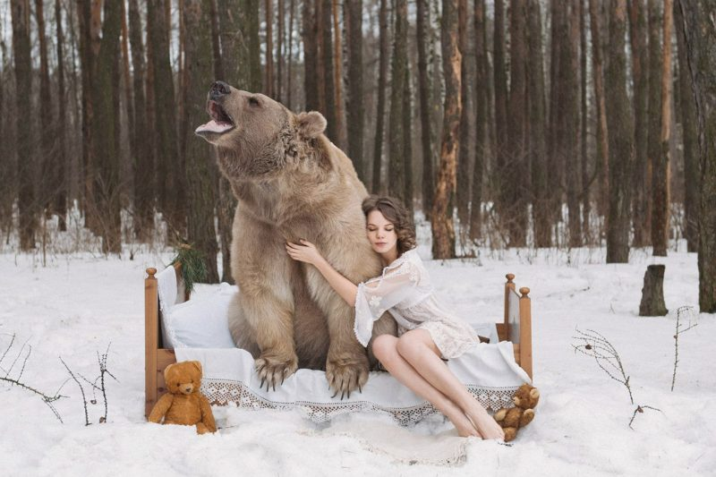 Olga Barantseva Modelling with Real Life Bear 9 Olga Barantseva Captures Dreamlike Scenes With a 700 Kilogram Bear