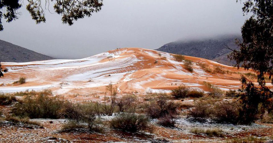 Snow Falls In The Sahara For First Time In Over 37 Years 3 Snow Falls In The Sahara For First Time In Over 37 Years