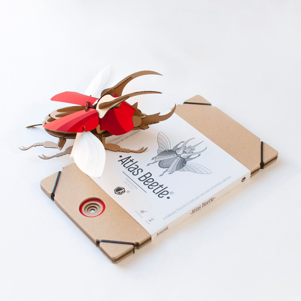 Creative DIY Paper Beetle Sculpture Kits by Assembli 3 Creative DIY Paper Beetle Sculpture Kits by Assembli
