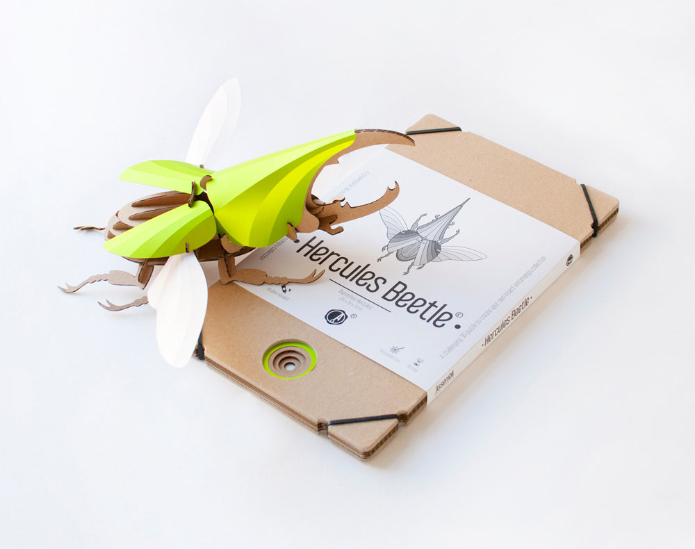 Creative DIY Paper Beetle Sculpture Kits by Assembli 4 Creative DIY Paper Beetle Sculpture Kits by Assembli