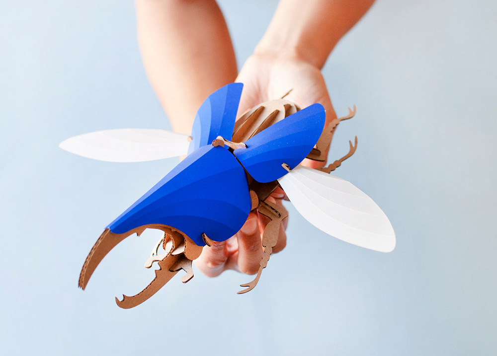 Creative DIY Paper Beetle Sculpture Kits by Assembli