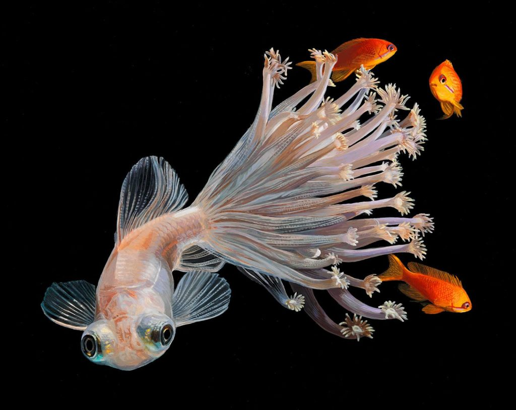 Hyperrealistic Depictions of Fish Merged by Lisa Ericson 3 1024x815 Lisa Ericson, Hyperrealistic Depictions of Fish Merged With Their Coral Environments