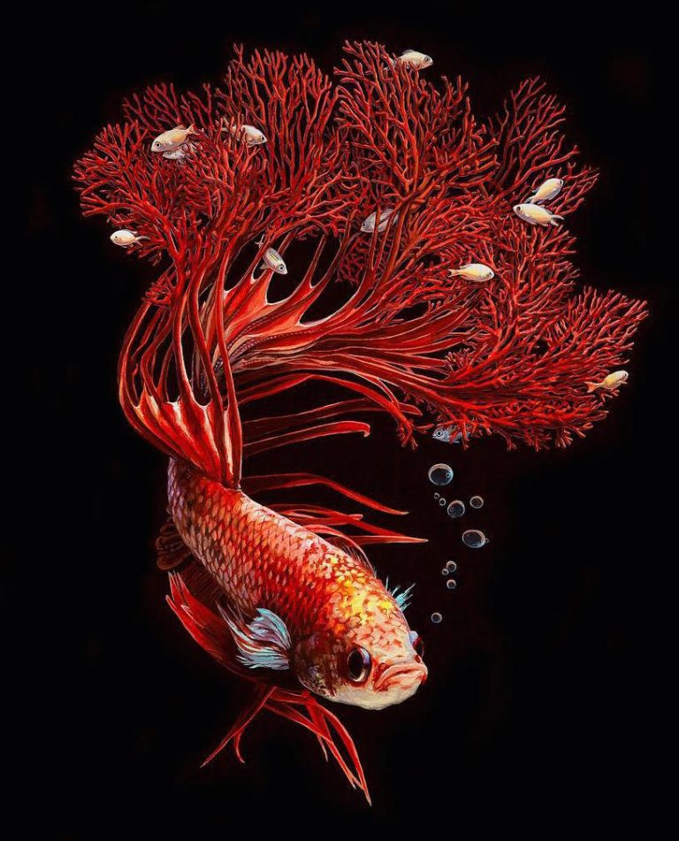 Hyperrealistic Depictions of Fish Merged by Lisa Ericson 54 Lisa Ericson, Hyperrealistic Depictions of Fish Merged With Their Coral Environments