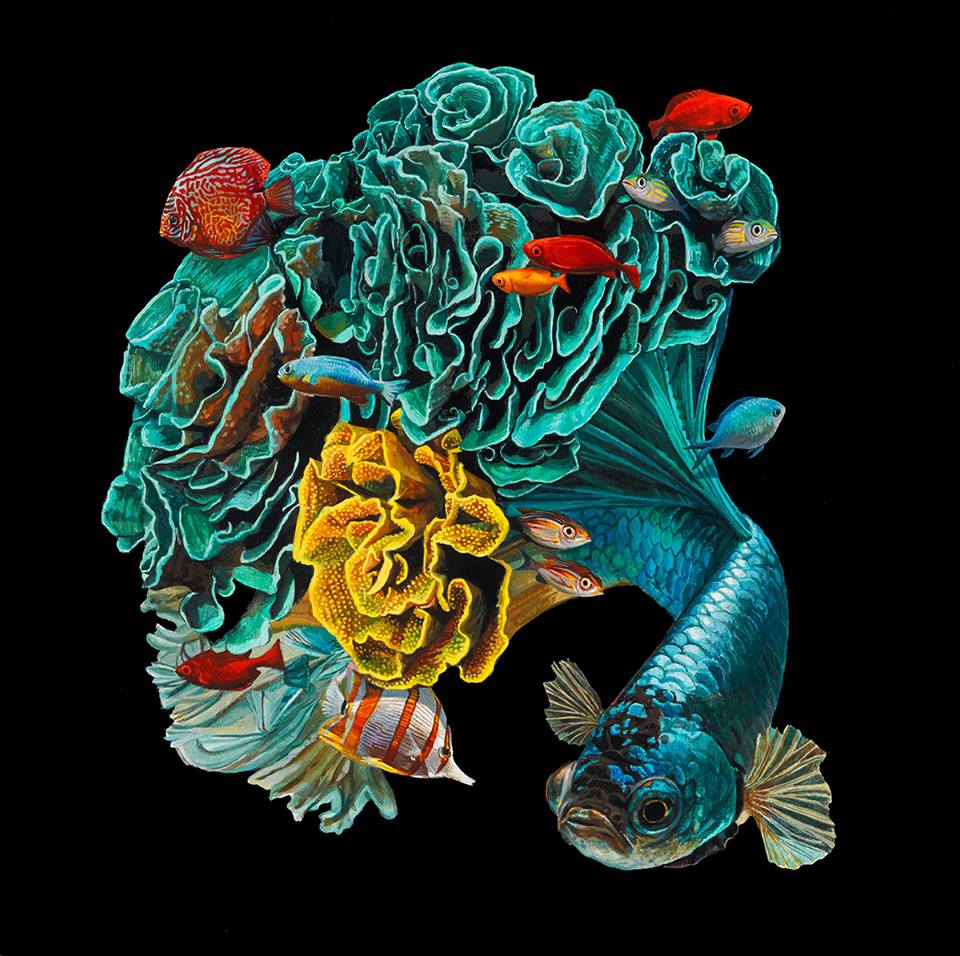 Hyperrealistic Depictions of Fish Merged by Lisa Ericson 6 Lisa Ericson, Hyperrealistic Depictions of Fish Merged With Their Coral Environments