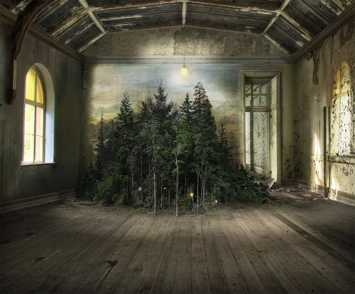 Photomontages That Trace Light Through Overgrown Countrysides and Abandoned Interiors