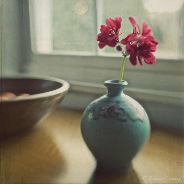 Still Life Photography by Suzanne Cummings — A Morning Place Creative Still Life Photography Ideas