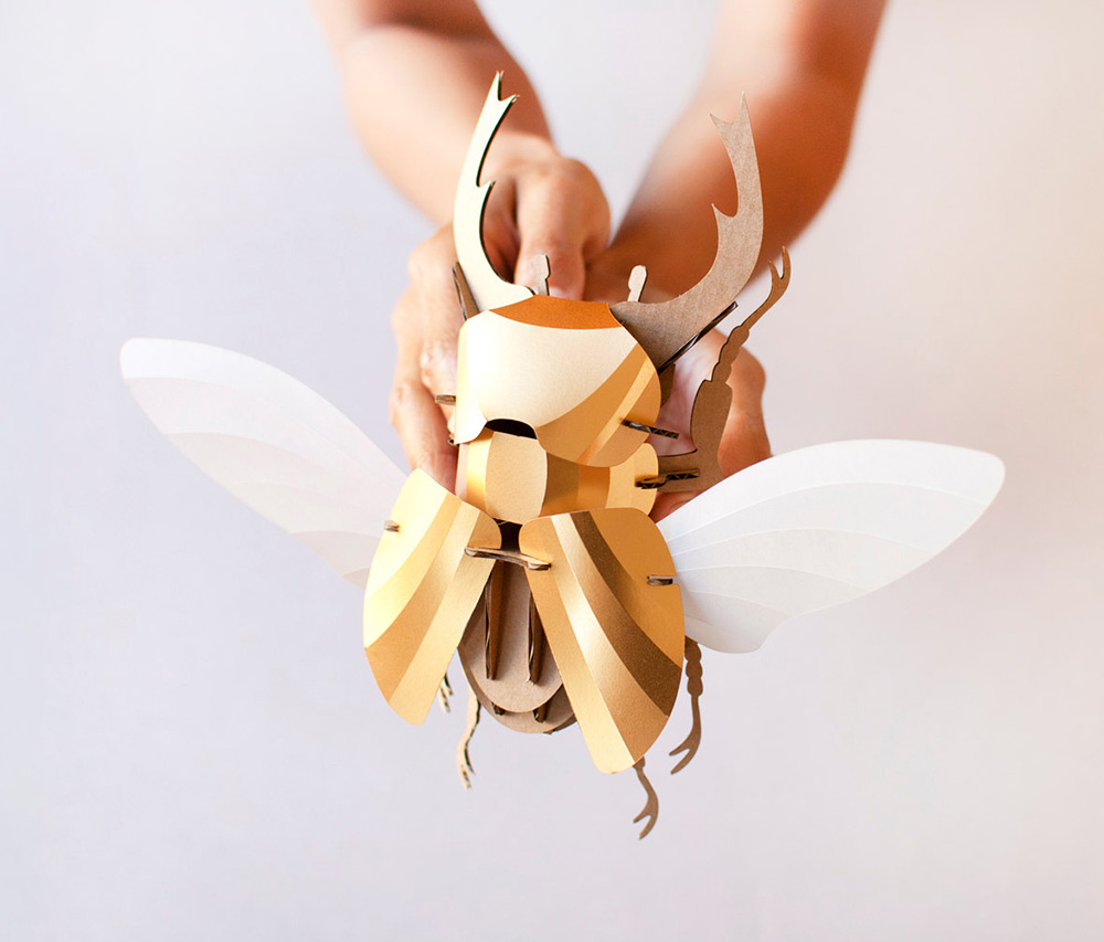 Unique DIY Paper Beetle Sculpture Kits by Assembli Creative DIY Paper Beetle Sculpture Kits by Assembli
