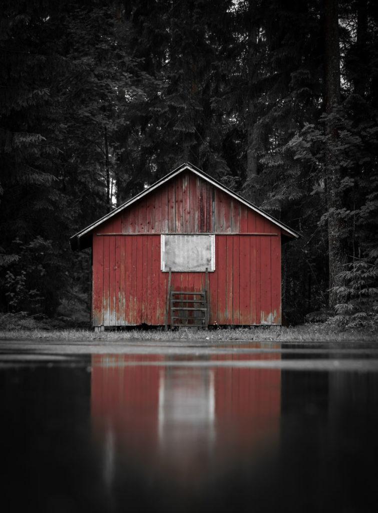Amazing Swedish Nature Photography Captured by Magnus Dovline 755x1024 Stunning Swedish Nature Photography Captured by Magnus Dovline