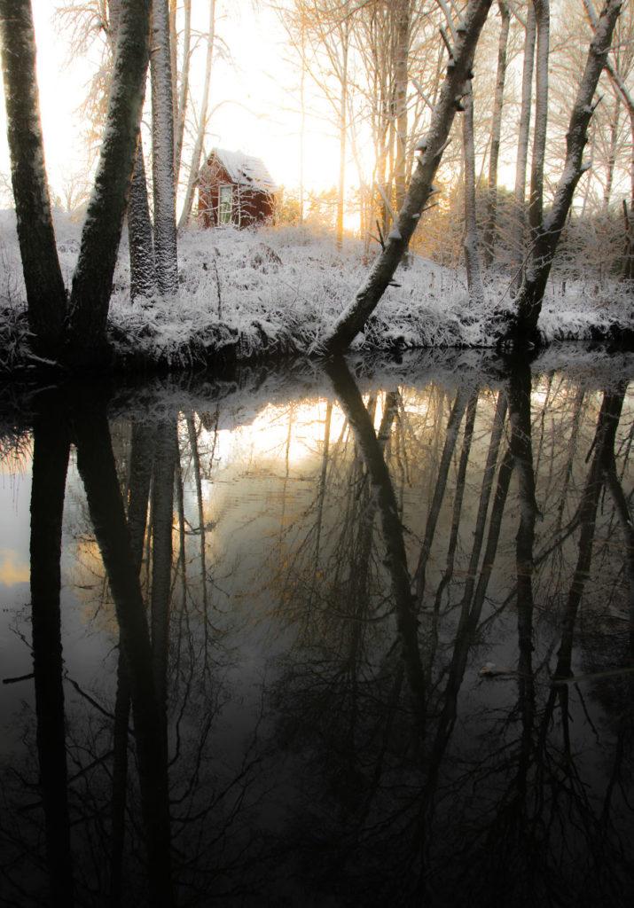 Beauty Swedish Nature Photography 715x1024 Stunning Swedish Nature Photography Captured by Magnus Dovline