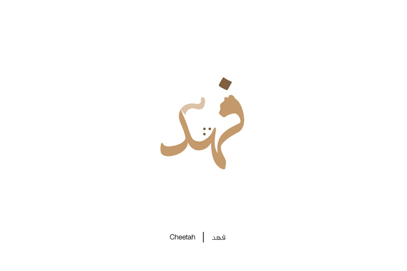 Brilliant Arabic Letters Illustration by Mahmoud Tammam 99 Brilliant Arabic Words Illustration That Will Surely Inspire Your