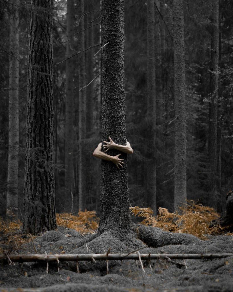 Stunning Swedish Nature Photography Captured by Magnus Dovline 817x1024 Stunning Swedish Nature Photography Captured by Magnus Dovline
