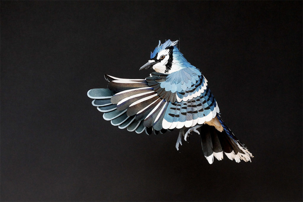 Colourful Paper Bird Sculptures by Diana Beltran Herrera 12 1024x683 Colourful Paper Bird Sculptures by Diana Beltran Herrera