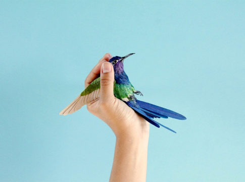 Colourful Paper Bird Sculptures by Diana Beltran Herrera