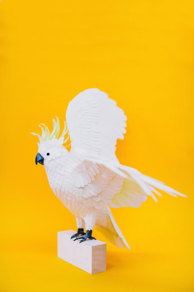 Colourful Paper Bird Sculptures by Diana Beltran Herrera 9 683x1024 Colourful Paper Bird Sculptures by Diana Beltran Herrera