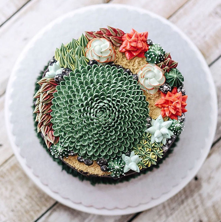 Delicious Ivenoven Succulent Cakes 1 Delicious and Amazing Terrarium and Flower Cakes Created by Iven Kawi