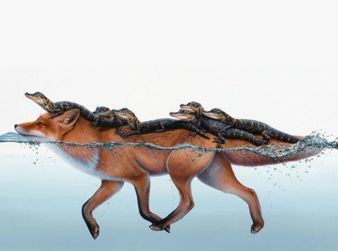 Stunning Surreal Animal Illustration by Jacub Gagnon