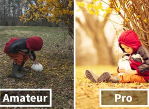 Amateur Vs. Pro: How Photographers Change Boring Scenes Into Perfect Shots