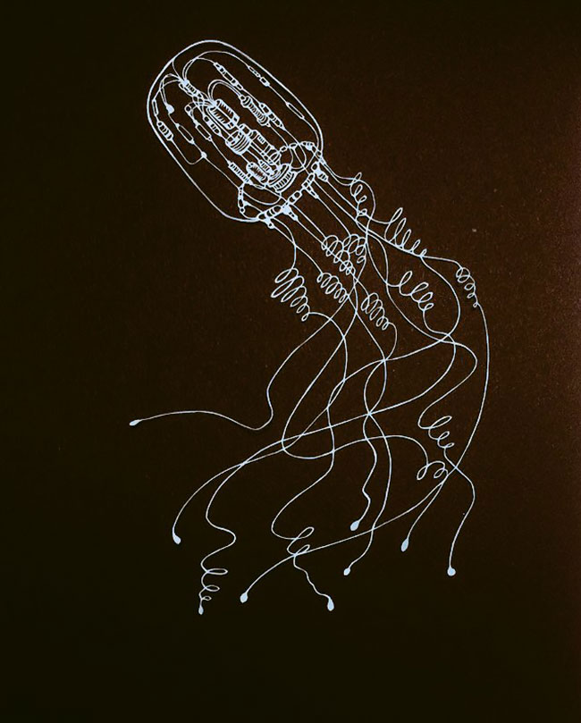 Wonderful of Paper Cuts Art 1 Detailed Paper Cuts Swirling Forms Of Nature by Kiri Ken