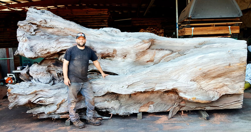 Artist Carves Fallen Redwood Tree Into Giant Sea Creature Artist Carves Fallen Redwood Tree Into Giant Sea Creature
