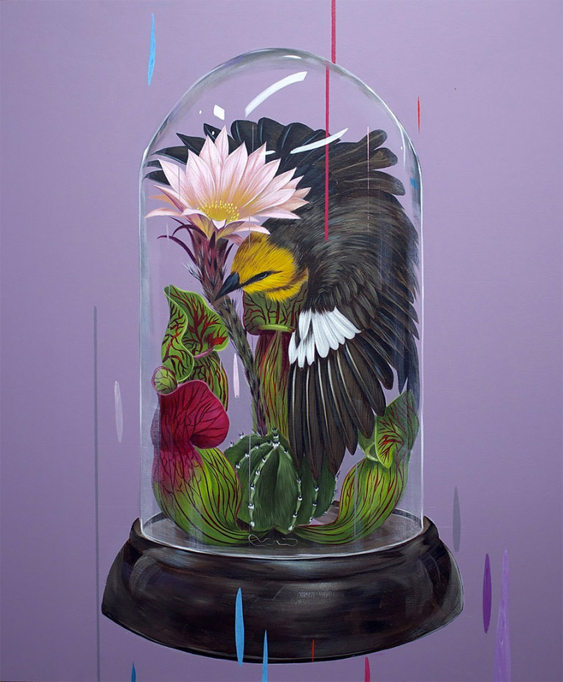 Beautiful Birds Paintings by Frank Gonzalez 2 Gorgeous Paintings of birds by American Artist Frank Gonzalez