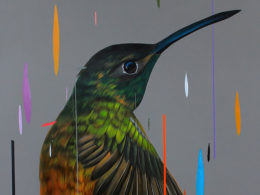 Gorgeous Paintings of birds by American Artist Frank Gonzalez 260x195 Home V.2