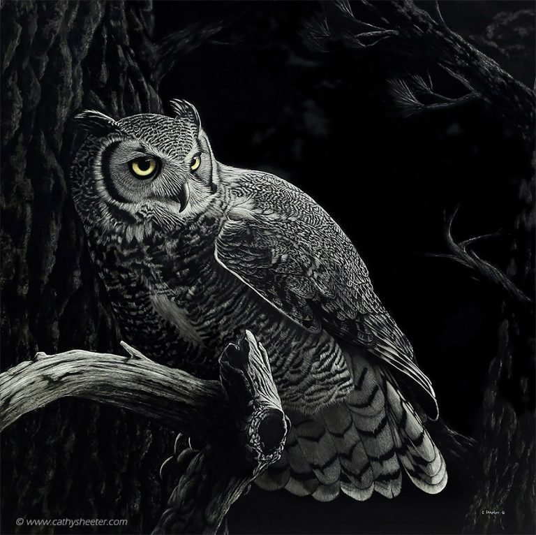 Hyper Realistic Scratchboard Illustrations by Cathy Sheeter 11 Hyper Realistic Scratchboard Illustrations by Cathy Sheeter