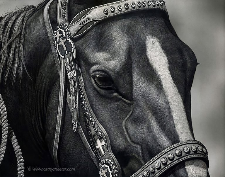 Hyper Realistic Scratchboard Illustrations by Cathy Sheeter 13 Hyper Realistic Scratchboard Illustrations by Cathy Sheeter