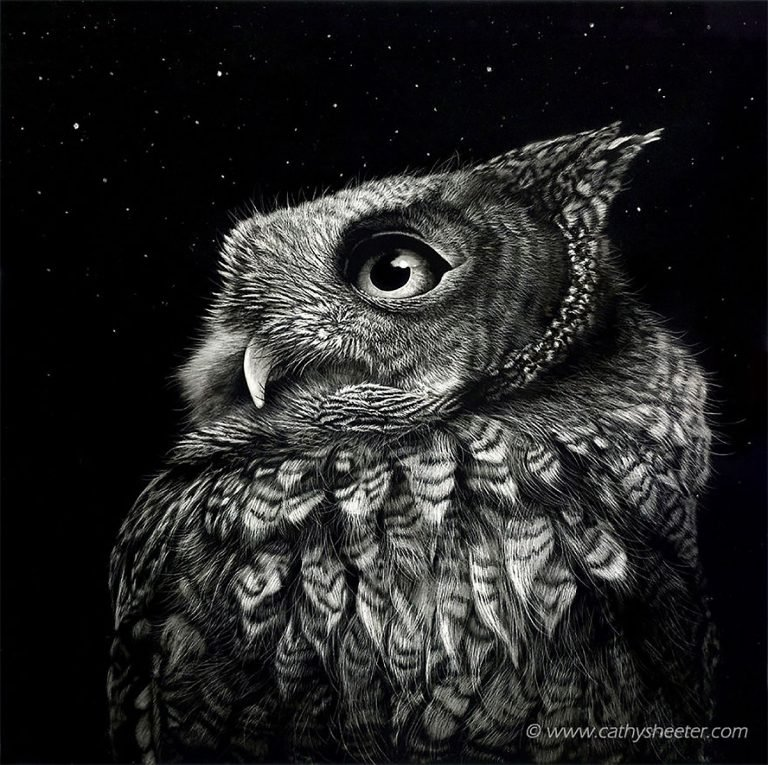 Hyper Realistic Scratchboard Illustrations by Cathy Sheeter 3 Hyper Realistic Scratchboard Illustrations by Cathy Sheeter