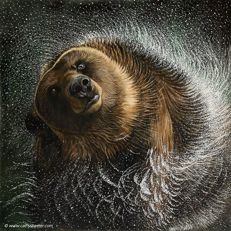 Hyper Realistic Scratchboard Illustrations by Cathy Sheeter 6 Hyper Realistic Scratchboard Illustrations by Cathy Sheeter