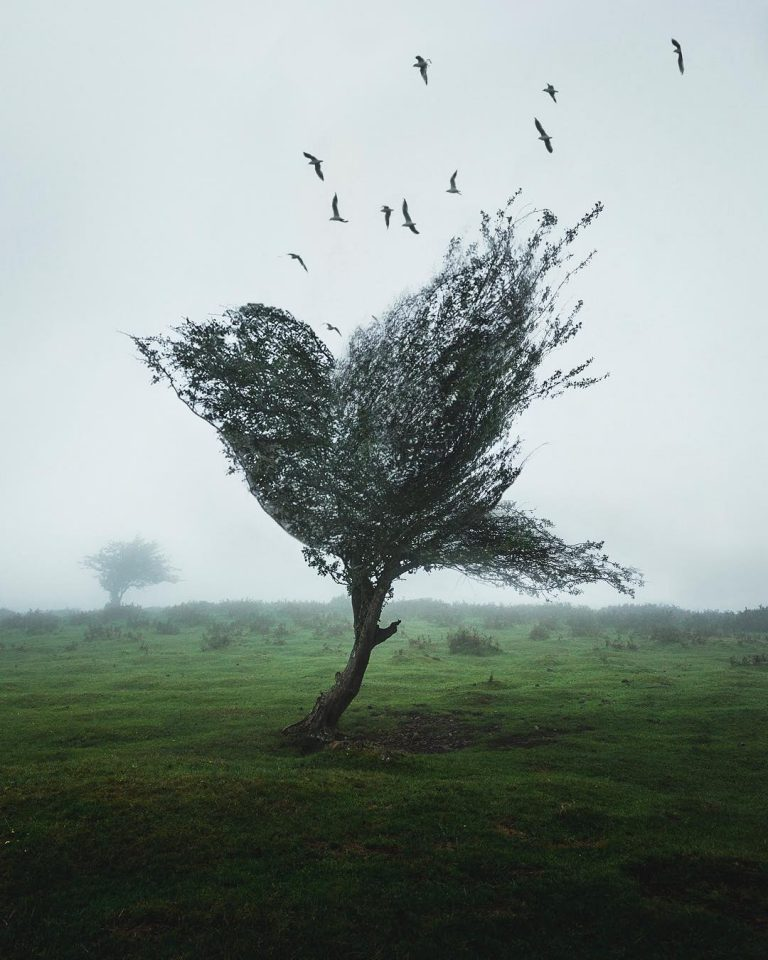 Creative and Beautiful Dreamlike Photo Manipulations by Justin Peters 2 Creative and Beautiful Dreamlike Photo Manipulations by Justin Peters