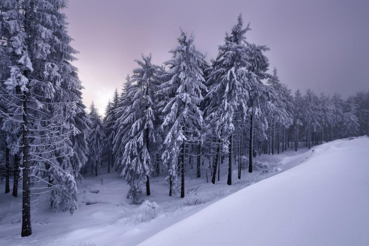 Frozen Landscapes Tell a Winter's Tale in New Photographs by Kilian Schönberger 2 Frozen Landscapes Tell a Winter's Tale in New Photographs by Kilian Schönberger