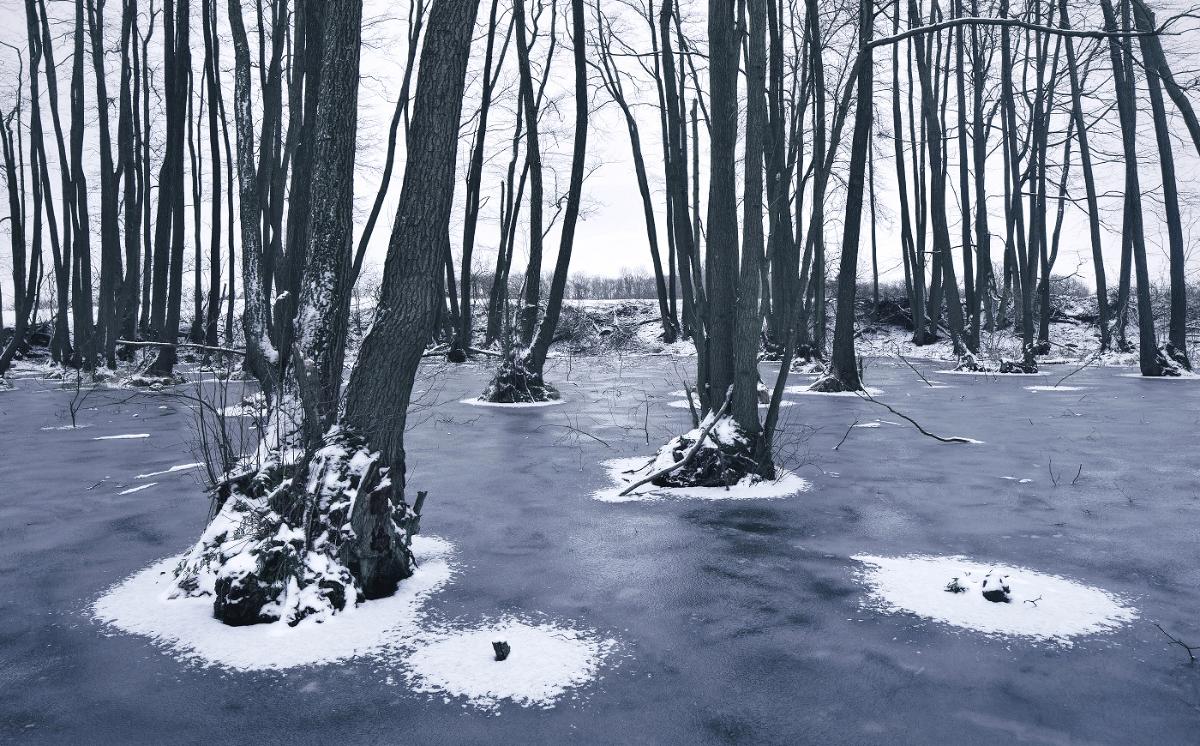Frozen Landscapes Tell a Winter's Tale in New Photographs by Kilian Schönberger 6 Frozen Landscapes Tell a Winter's Tale in New Photographs by Kilian Schönberger