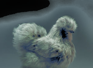 "Portraits of ""Most Beautiful Chickens on the Planet"" Capture Their Underrated Beauty"