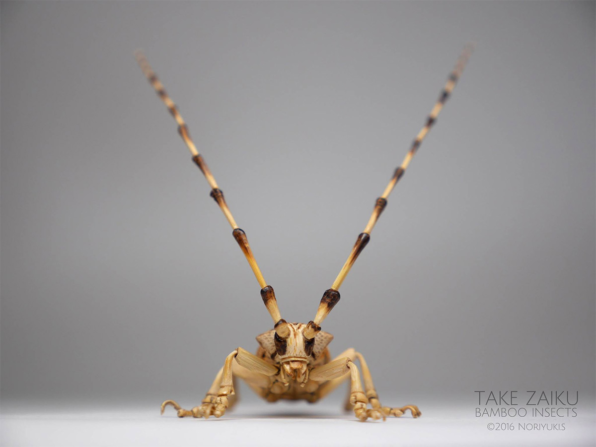 Incredibly Lifelike Insects Crafted out of Bamboo by Noriyuki Saitoh 10 Incredibly Lifelike Insects Crafted out of Bamboo by Noriyuki Saitoh